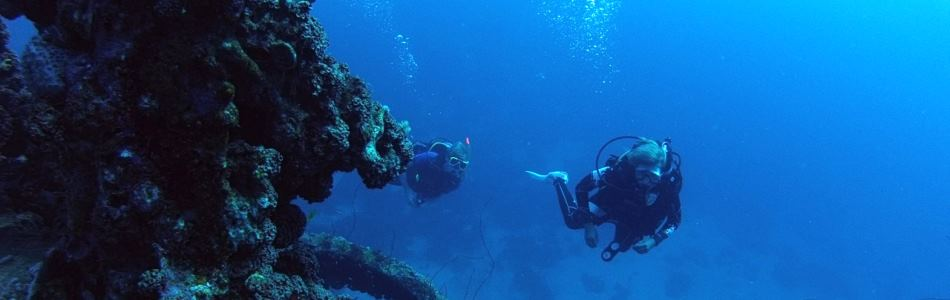 Curacao has many dive spots to dive
